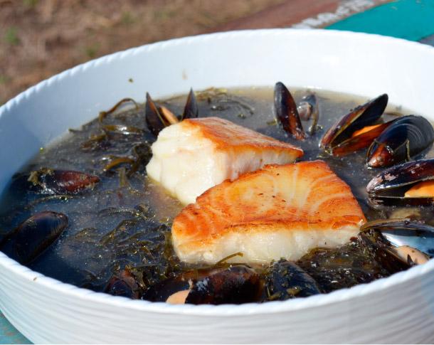 Cocina Austral