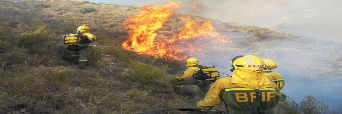 """Agosto en la Academia Virtual OBA: """"Técnicas de supervivencia en incendios forestales"""""""
